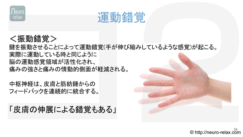スライド5:運動錯覚