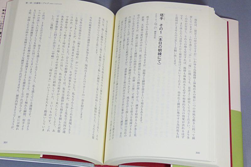『佐藤聖二遺稿集 太気拳・意拳研究ノート』イメージ03